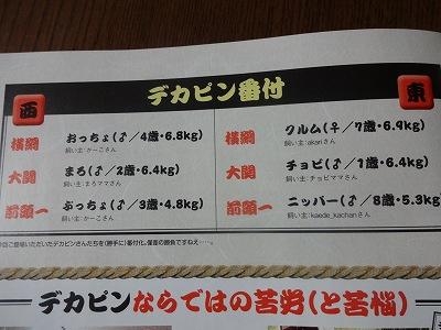 s-雑誌 (10)
