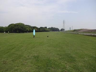 s-ロングマテ (3)