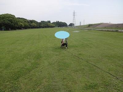 s-ロングマテ (14)