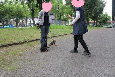 s-レッスン6月3週 ① (8)
