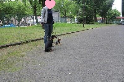 s-レッスン6月3週 ① (9)
