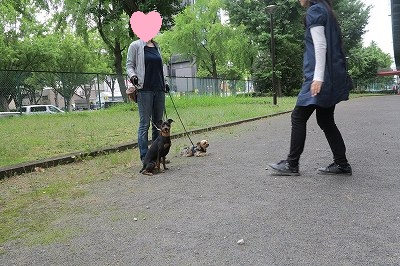 s-レッスン6月3週 ① (10)