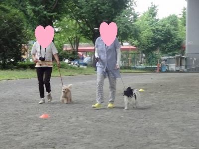s-レッスン6月3週 ① (13)
