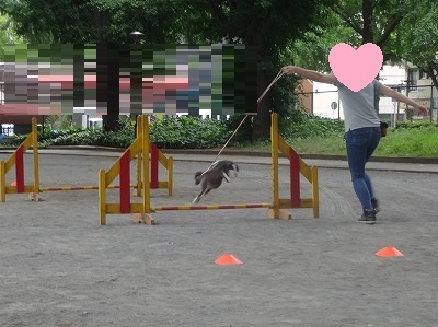 s-レッスン6月3週 ② (14)