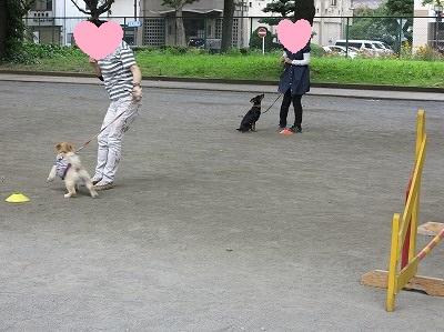 s-レッスン6月3週 ② (17)