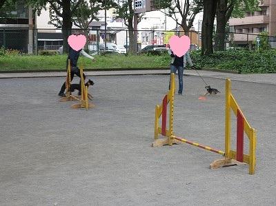 s-レッスン6月3週 ② (18)