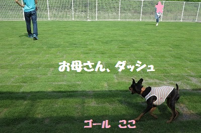 s-岐阜レッスン (3)