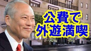 2014年7月23日~25日、舛添要一御一行は、ロッテホテルに11人が2泊3日して、1000万円超(一人約100万円!)を浪費して韓国を訪問した。