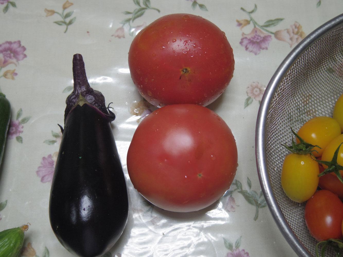 tomato201507213.jpg