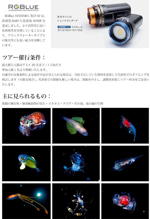 久米島BlackWaterDiveご案内 (2)-3