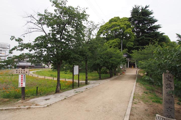 20150613_tsudo_shiroyama_kofun-04.jpg