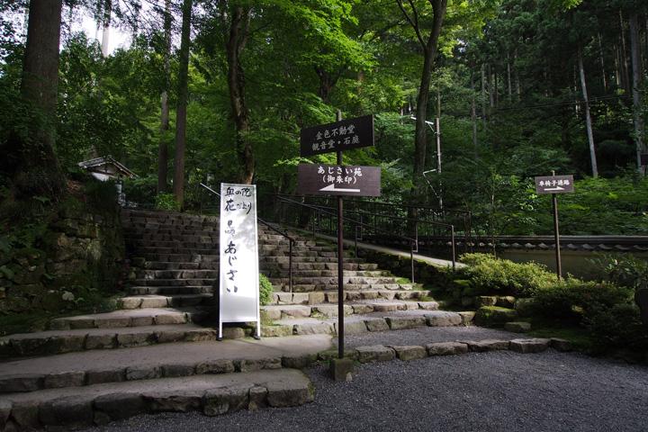 20150628_sanzenin-08.jpg