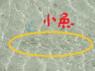 6-17竹富島7f
