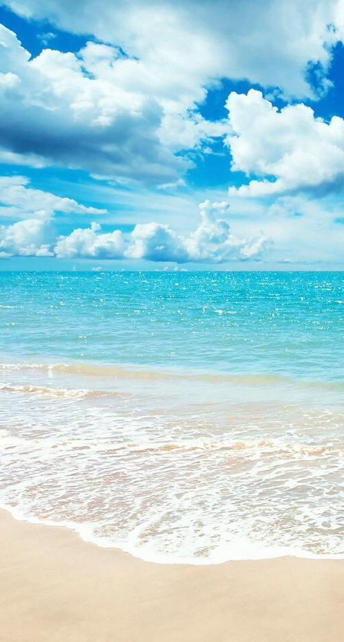 海風に吹かれたい〜。