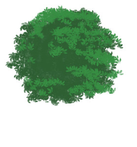 treebase2color.jpg