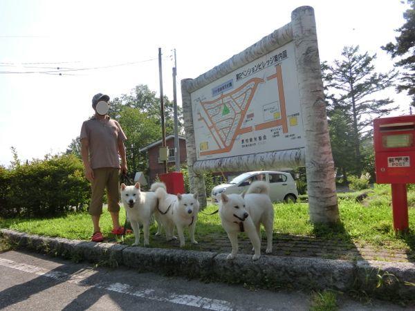 2015.8.1 原村ペンションビレッジ1