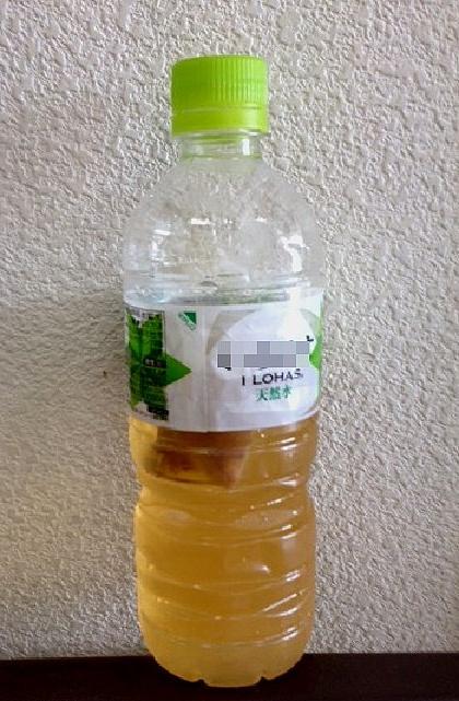 朝キクイモ茶