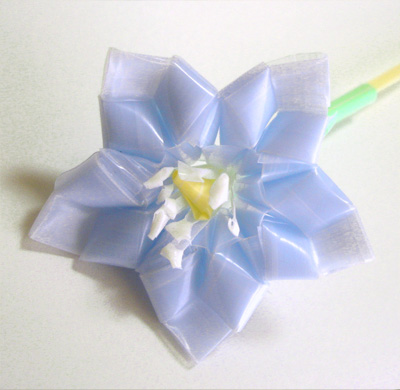 菱玉花 花弁つき青