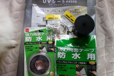DSC01291 (640x427)