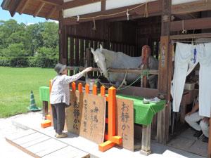 上賀茂神社blog03