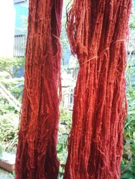 フェルナンブコのシルクの糸