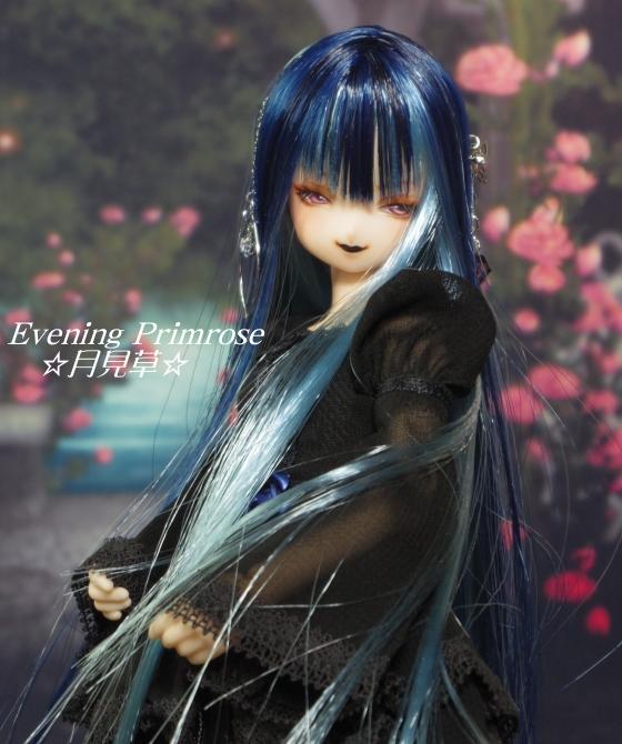 瑠璃蝶06