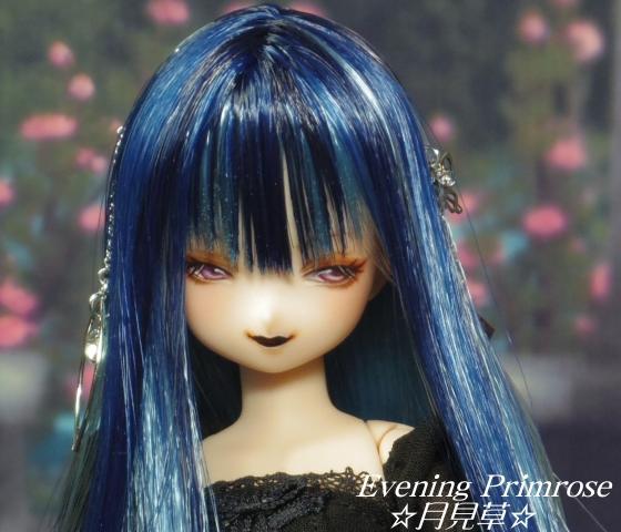 瑠璃蝶05