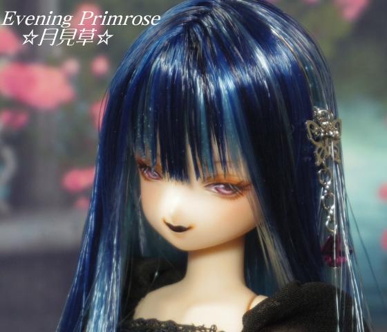 瑠璃蝶03