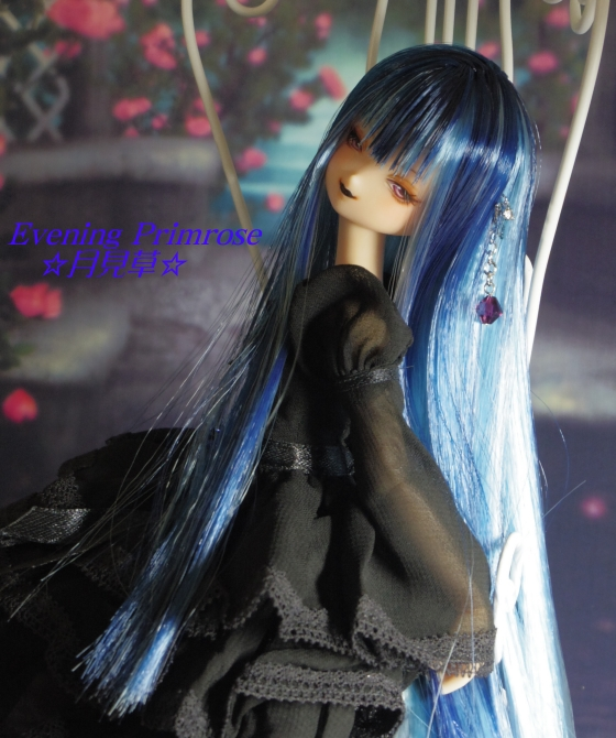 瑠璃蝶12