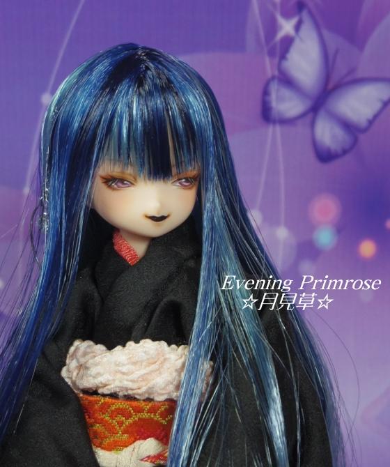 瑠璃蝶08