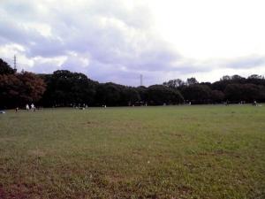 大泉緑地 大芝生広場(2011年9月)