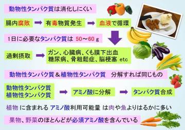 プラ 栄養+-+コピー_convert_20150728171819