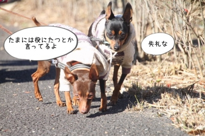 2014_11_22_9999_31.jpg