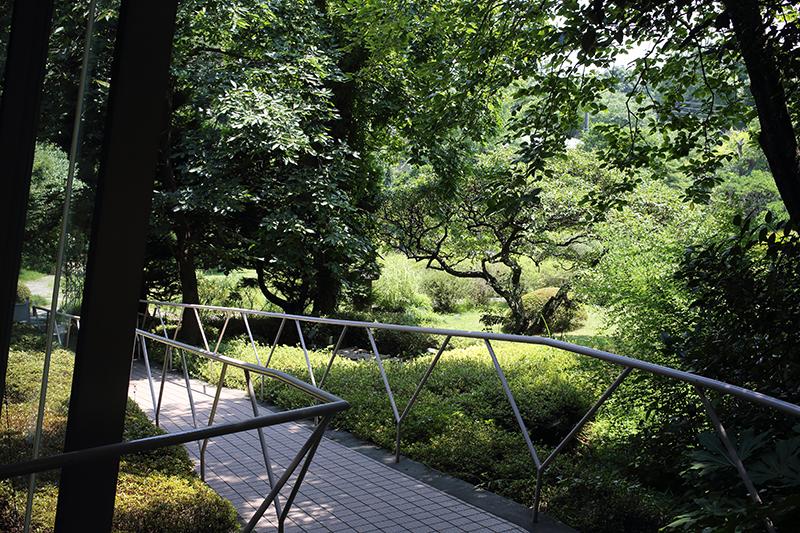 吉澤ギャラリーからの庭