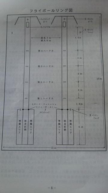 フライボールリング図