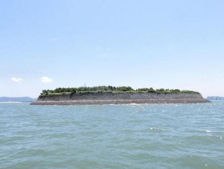 探鳥会人工島 105