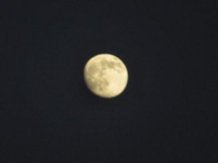 今夜のお月さん 003