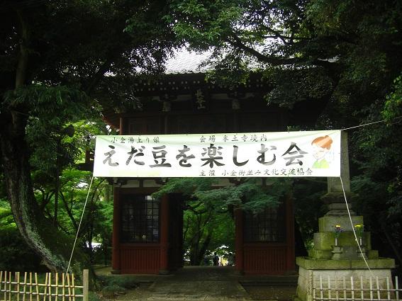 20150704手賀沼B (4)