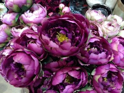 7月17日ブログ紫