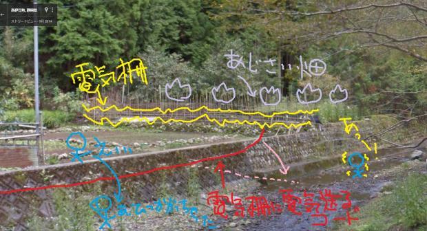 light_dotup_org214487.jpg