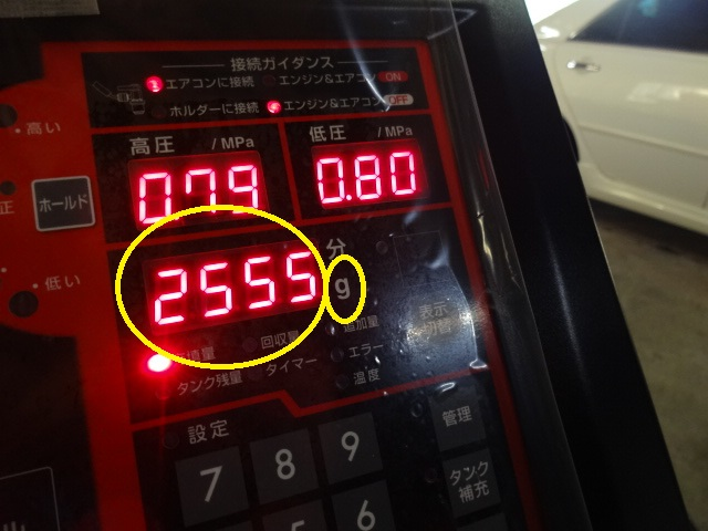 DSC09021.jpg