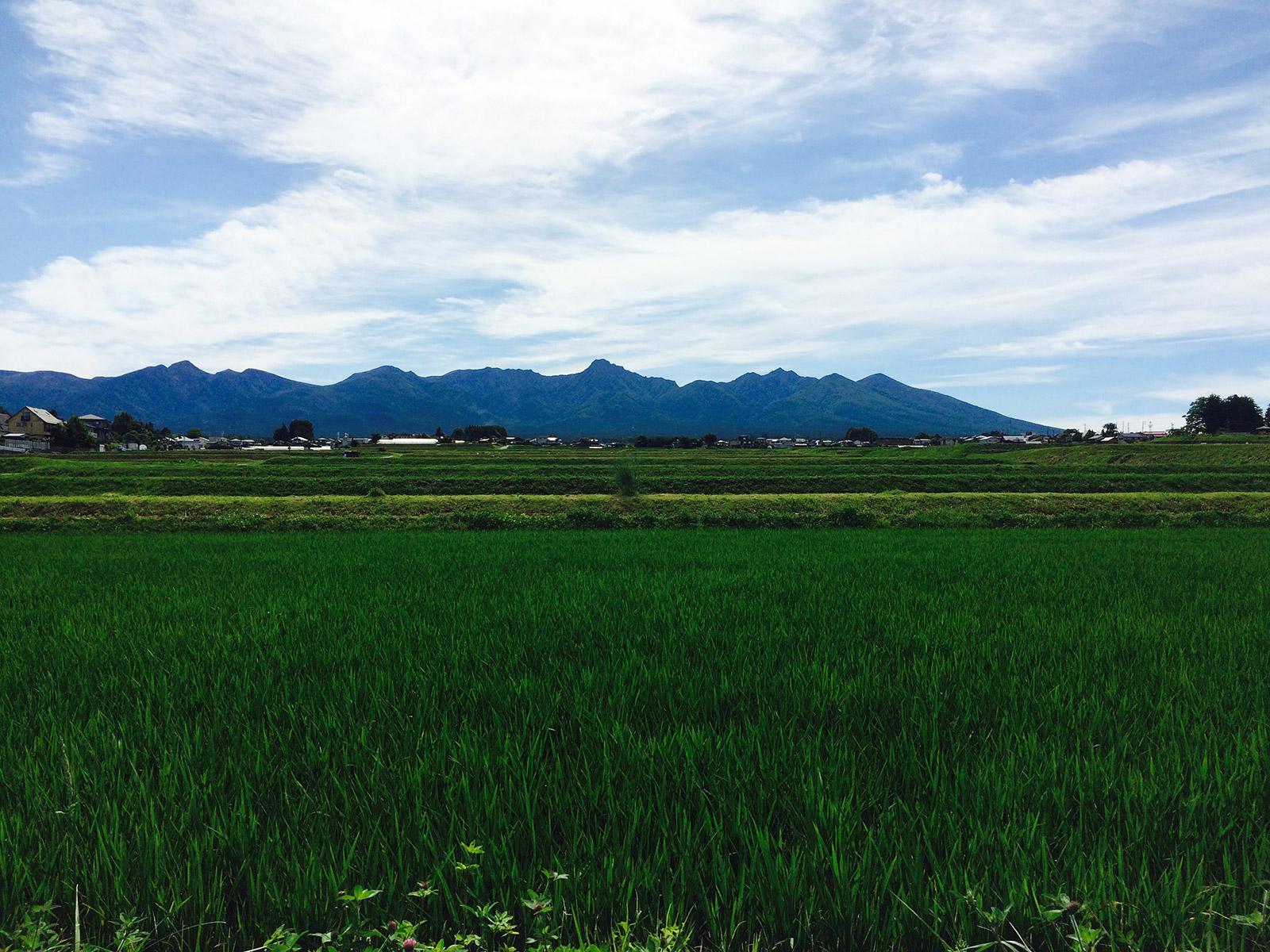 20150628_yatsugatake_1.jpg