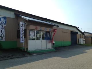 吉田町 しらす おすすめ