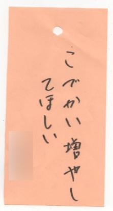tana4.jpg