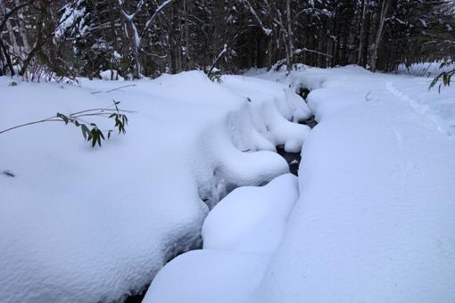 渓流の雪玉♪