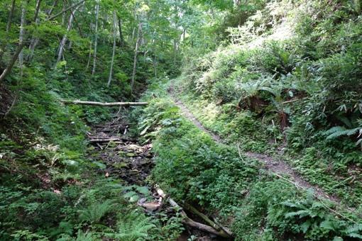 山部川の支流沿いはまるで古道