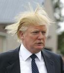 donald-trump-hair-bald-weave1.jpg