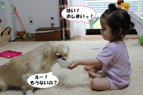 018_convert_20150707211207.jpg