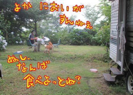 12_convert_20150724215246.jpg