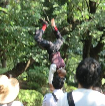 uenodaidougei1.jpg
